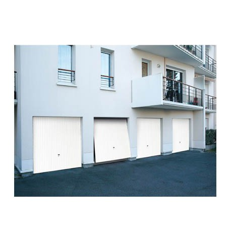 porte de garage basculante d bordante avec rails de guidage dl diffam. Black Bedroom Furniture Sets. Home Design Ideas